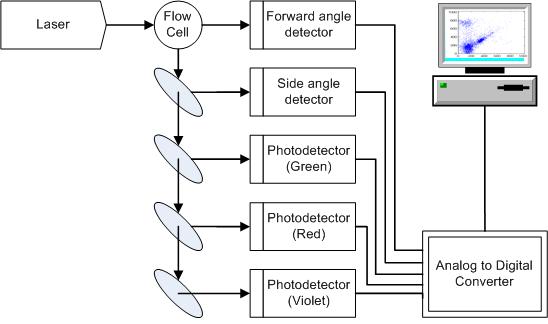 Laboratory dataflow thesis
